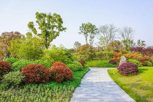 园艺景观设计案例